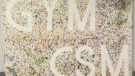C'est avec fierté que nous avons accroché il y a quelques jours, les nouveaux tableaux «centraux» des deux salles. Il y a quelques années, Bruno Zabaletta et ses poussins avaient […]